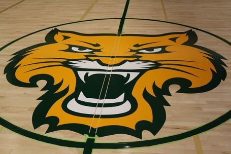 Wildcat Logo on Court