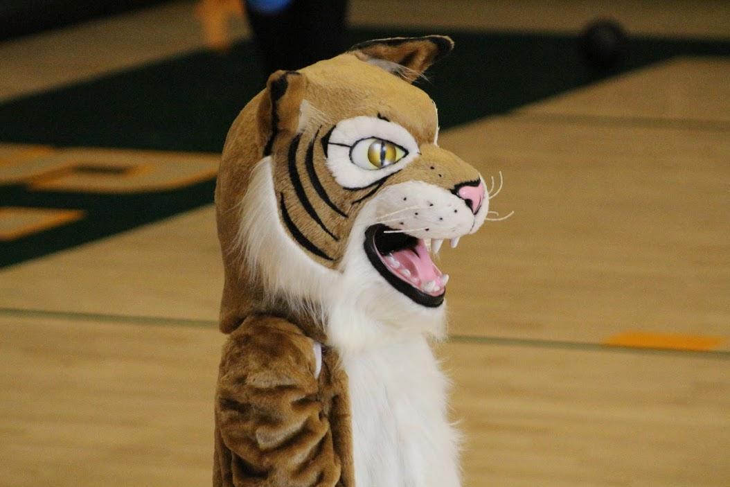Mascot in Gym.JPG